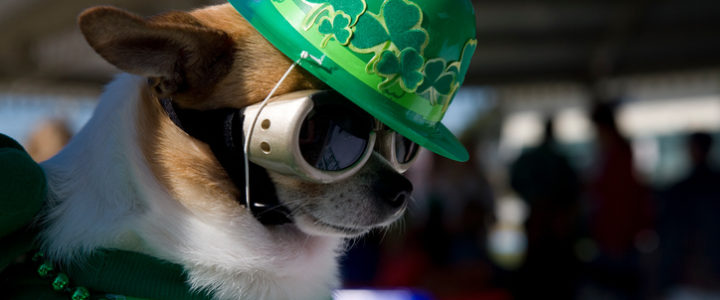 St. Patrick's Day in Austin with Century South